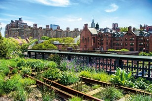 Urban Gardening: High Line Park in New York