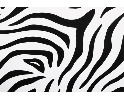 d c fix klebefolie tierfell optik zebra schwarz weiss 45x200 cm bei hornbach kaufen. Black Bedroom Furniture Sets. Home Design Ideas