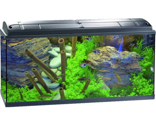 Aquarium Mller Und Pfleger Aquapro 100 Plus