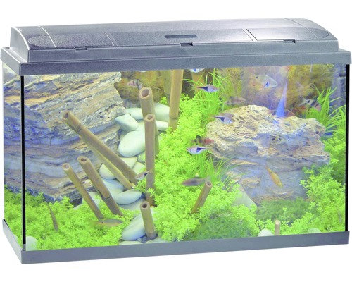aquarium eheim aquapro 80 technikpaket co ohne. Black Bedroom Furniture Sets. Home Design Ideas