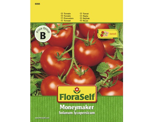 Tomate 'Moneymaker' FloraSelf Gemüsesamen