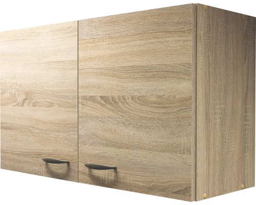 h ngeschrank oslo breite 100 cm sonoma eiche bei hornbach. Black Bedroom Furniture Sets. Home Design Ideas