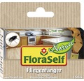 Leimfalle Fliegenfänger FloraSelf Nature 4 Stk