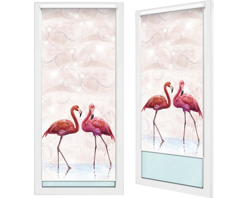 dim out rollo f4 flamingos 80x185 cm bei hornbach kaufen. Black Bedroom Furniture Sets. Home Design Ideas