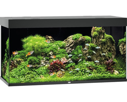 aquarium juwel rio 350 mit led beleuchtung pumpe filter. Black Bedroom Furniture Sets. Home Design Ideas