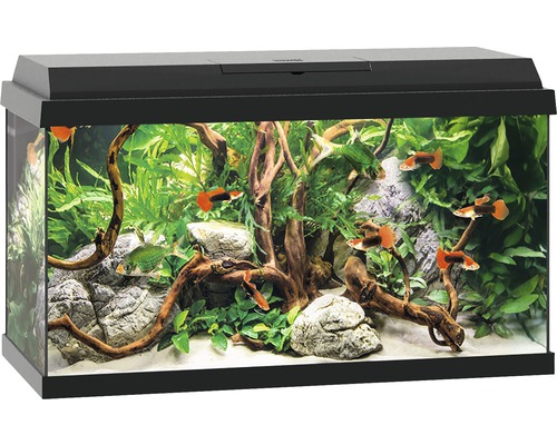 aquarium juwel primo 60 mit led beleuchtung heizer filter ohne unterschrank schwarz bei. Black Bedroom Furniture Sets. Home Design Ideas