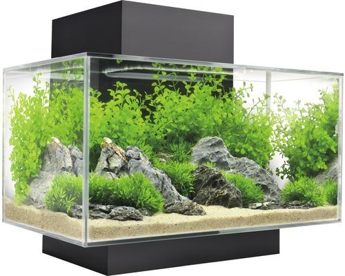 aquarium fluval edge 2 0 23 l mit innenfilter led beleuchtung wasseraufbereiter schwarz bei. Black Bedroom Furniture Sets. Home Design Ideas