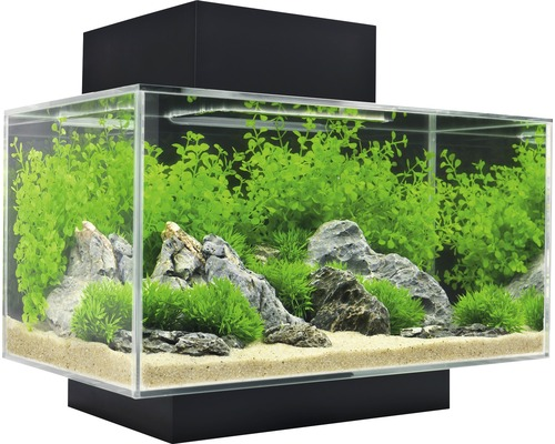 aquarium fluval edge i mit led beleuchtung filter schwarz bei hornbach kaufen. Black Bedroom Furniture Sets. Home Design Ideas