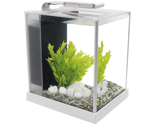 aquarium fluval spec 3 nano 10 7 l mit led beleuchtung filter wei bei hornbach kaufen. Black Bedroom Furniture Sets. Home Design Ideas