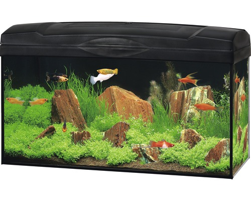 aquarium marina basic 54 mit beleuchtung heizer filter ohne unterschrank schwarz bei hornbach. Black Bedroom Furniture Sets. Home Design Ideas