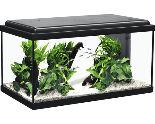 aquarium aquatlantis advance 60 mit led beleuchtung filter heizer ohne unterschrank schwarz. Black Bedroom Furniture Sets. Home Design Ideas