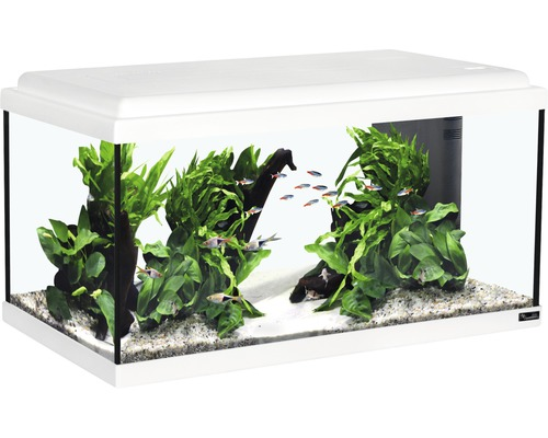 aquarium aquatlantis advance 60 mit led beleuchtung filter heizer ohne unterschrank wei bei. Black Bedroom Furniture Sets. Home Design Ideas