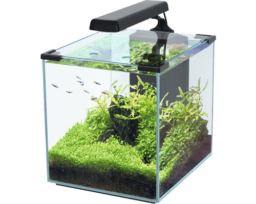 aquarium aquatlantis nano cubic 30 mit led beleuchtung filter heizer schwarz bei hornbach kaufen. Black Bedroom Furniture Sets. Home Design Ideas