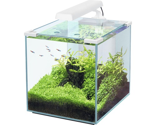 aquarium aquatlantis nano cubic 30 mit led beleuchtung filter heizer wei bei hornbach kaufen. Black Bedroom Furniture Sets. Home Design Ideas