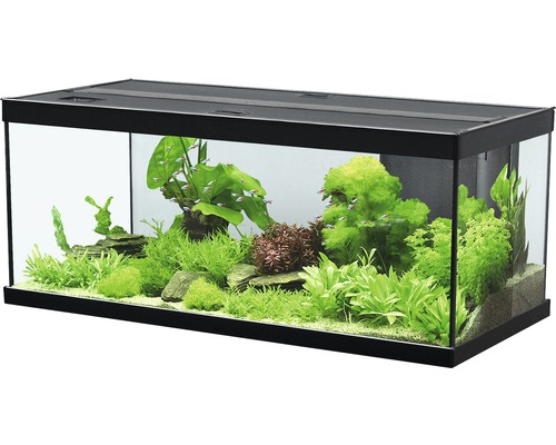 aquarium aquatlantis style 100x40 cm mit led beleuchtung filter heizer ohne unterschrank. Black Bedroom Furniture Sets. Home Design Ideas