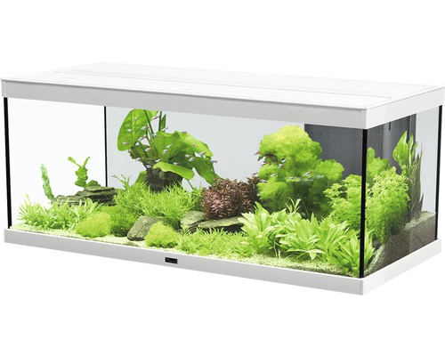 aquarium aquatlantis style 100x40 cm mit led beleuchtung filter heizer ohne unterschrank wei. Black Bedroom Furniture Sets. Home Design Ideas