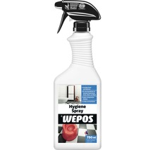 Hygiene Spray Wepos 0,75 l