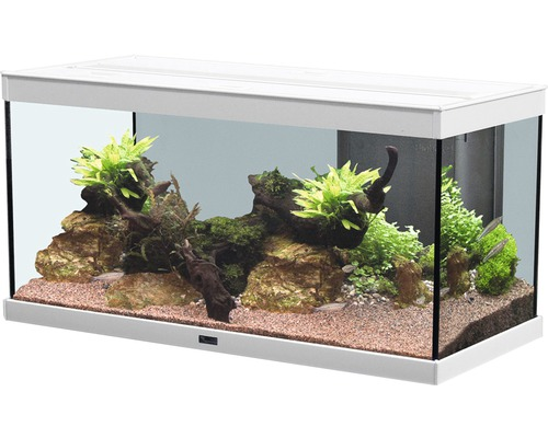 aquarium aquatlantis style 80x35 cm mit led beleuchtung filter heizer ohne unterschrank wei. Black Bedroom Furniture Sets. Home Design Ideas