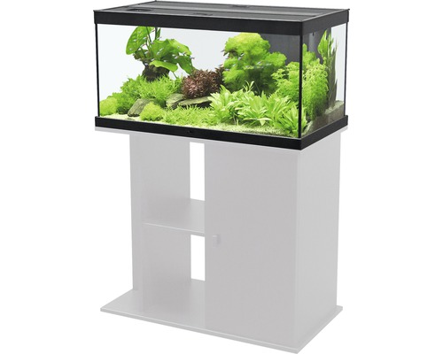 aquarium aquatlantis style 80x35 cm mit led beleuchtung filter heizer ohne unterschrank. Black Bedroom Furniture Sets. Home Design Ideas