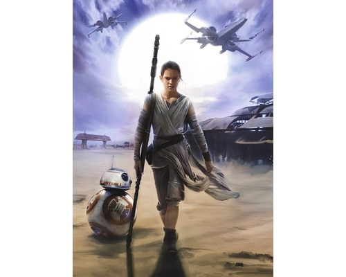 Tapeten Kinderzimmer Star Wars : Fototapete Disney Edition 2 STAR WARS REY 184 x 254 cm bei HORNBACH