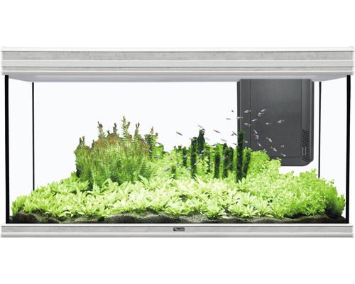 aquarium aquatlantis fusion 120x50 mit led beleuchtung filter heizer ohne unterschrank. Black Bedroom Furniture Sets. Home Design Ideas