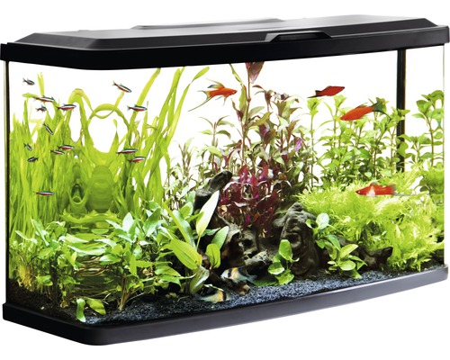 aquarium fluval vue mit led beleuchtung heizer filter ohne unterschrank schwarz bei hornbach. Black Bedroom Furniture Sets. Home Design Ideas